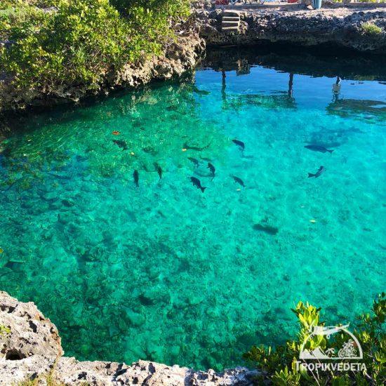 Cueva de los peces - Ciénaga de Zapata